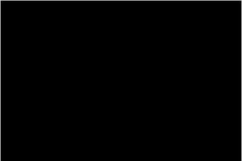 交流大会幼年の部平野楓優勝小学2年中級の部満行崇博優勝小学2年上級の部武田光生優勝小学4年中級の部岩藤友羽優勝小学4年上級の部重平優斗優勝地区選抜小学1年男子の部好岡康成小学2年男子の部瀬切慎之助小学3年女子の部廣田麗小学3年男子の部眞鍋貫太朗小学5年男子の部浜塚瑞貴小学6年男子の部廣田葵生中学生男子の部浜塚響